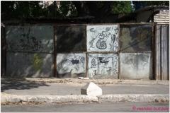 20111115 Kuba Hawana (47)