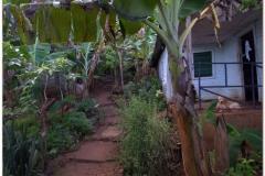 20111119 Baracoa (105)