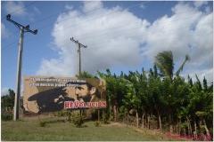 20111126 Kuba Cienfuegos-Zapata (24)