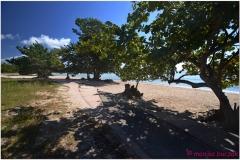 20111128 Kuba Playa Larga (59)