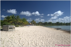 20111128 Kuba Playa Larga (63)