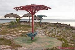 20111129 Kuba Playa Larga (15)