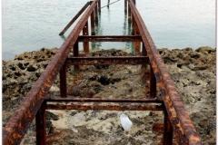20111129 Kuba Playa Larga (22)