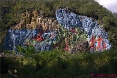 20111201 Kuba Vinales (22)