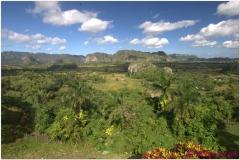 20111201 Kuba Vinales (3)