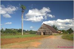 20111201 Kuba Vinales (6)