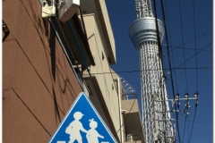 20120822 Tokio (20)
