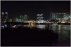 20120823 Japonia Tokio (123)