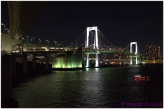 20120823 Japonia Tokio (134)