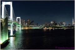 20120823 Japonia Tokio (148)