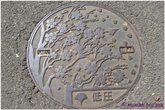 20120823 Japonia Tokio (21)