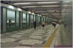20120824 Japonia Tokio (39)