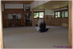 20120826 Japonia Iwama (35)