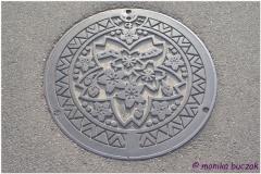 20120826 Japonia Iwama (76)