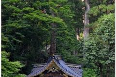 20120828 Japonia Nikko (131)