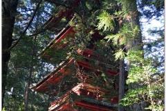 20120828 Japonia Nikko (134)