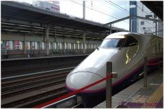 20120828 Japonia Nikko (157)