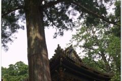 20120828 Japonia Nikko (42)