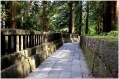20120828 Japonia Nikko (66)