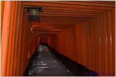 20120831 Japonia Kioto (14)