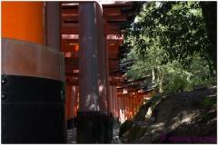 20120831 Japonia Kioto (25)