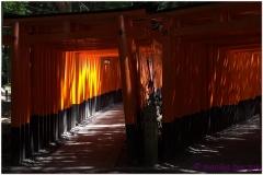 20120831 Japonia Kioto (4)
