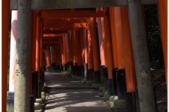 20120831 Japonia Kioto (45)