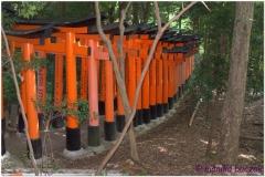 20120831 Japonia Kioto (49)