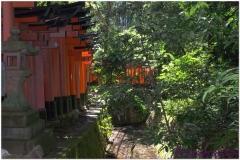 20120831 Japonia Kioto (52)