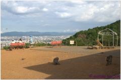 20120831 Japonia Kioto (99)