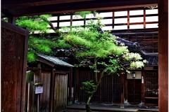 20120902 Japonia Kanazawa (20)b