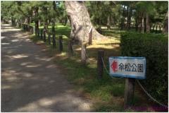 20120903 Japonia Amanohashidate (33)