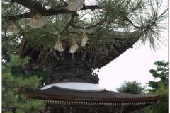 20120903 Japonia Amanohashidate (4)