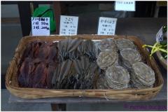 20120903 Japonia Amanohashidate (72)