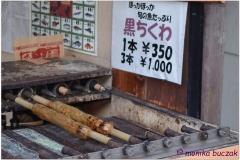 20120903 Japonia Amanohashidate (74)