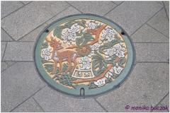 20120905 Japonia Nara (123)
