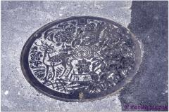 20120905 Japonia Nara (2)