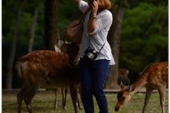 20120905 Japonia Nara (70)