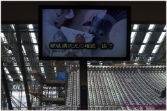 20120907 Japonia Himeji (33)