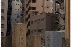 20120907 Japonia Osaka (9)
