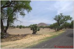 20130430 Meksyk-Teotihuacan 16