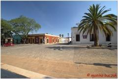 20130501 Meksyk - Oaxaca 10