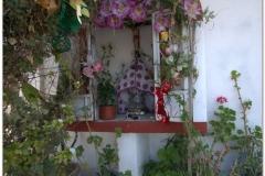 20130502 Meksyk Oaxaca-Mitla-Tule 20