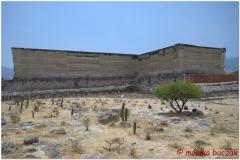 20130502 Meksyk Oaxaca-Mitla-Tule 35