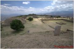 20130503 Meksyk Oaxaca-Monte Alban 77