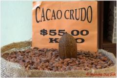 20130504 Meksyk Oaxaca 16