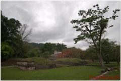 20130505 Meksyk Palenque 38