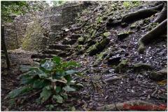 20130505 Meksyk Palenque 45