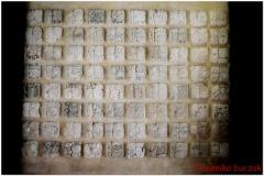 20130505 Meksyk Palenque 56