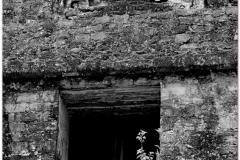 20130507 Gwatemala Tikal-Remate 86